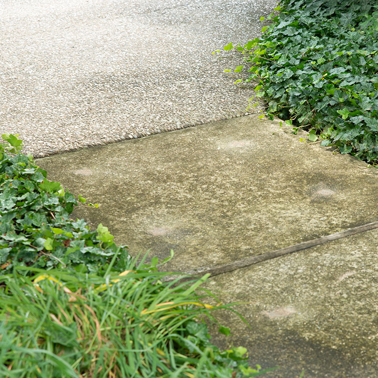 Louisville Concrete Sidewalk Leveling - After