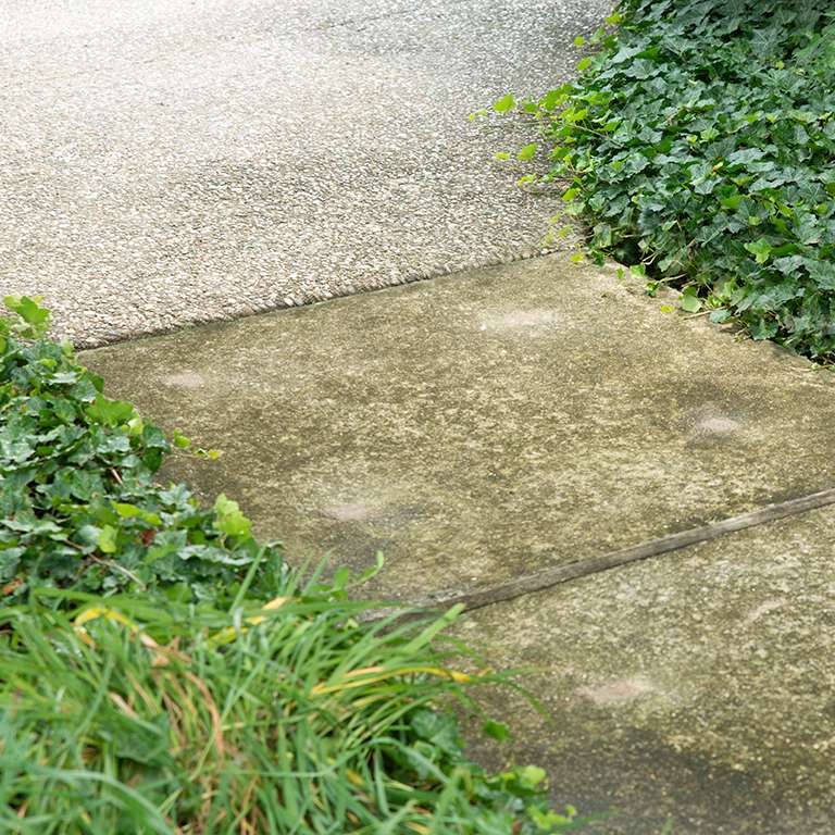 Concrete Sidewalk Leveling - After